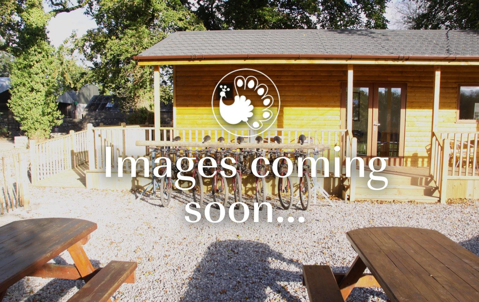 Oak Tree Cabin, coming soon