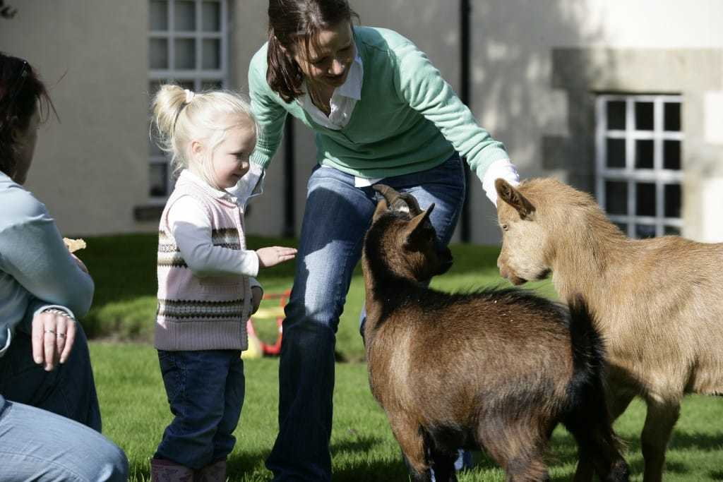 family Pet Friendly Kids activities onsite Blessingbourne