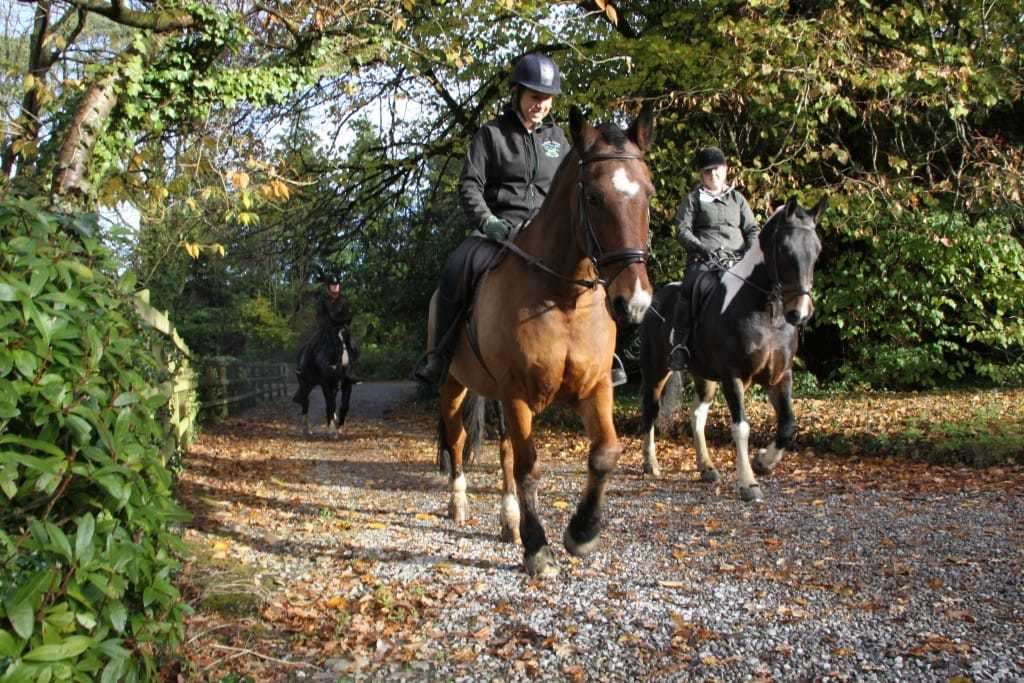 learn to Horse riding onsite blessingbourne country estate