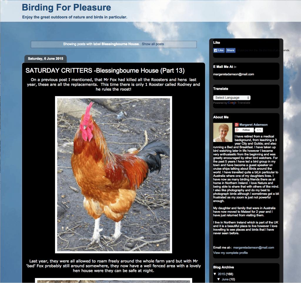 screenshot of birding for pleasure