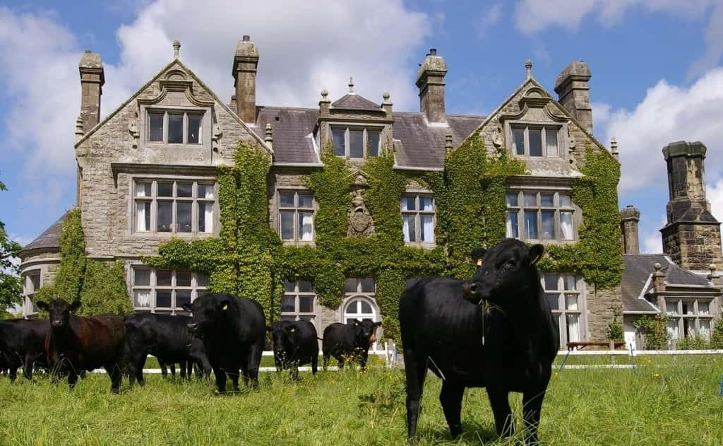 Blessingbourne country house Estate Self Catering Pet Friendly family friendly Accommodation Northern Ireland fivemiletown five mile town working farm group accommodation ni points of interest fermanagh things to do see
