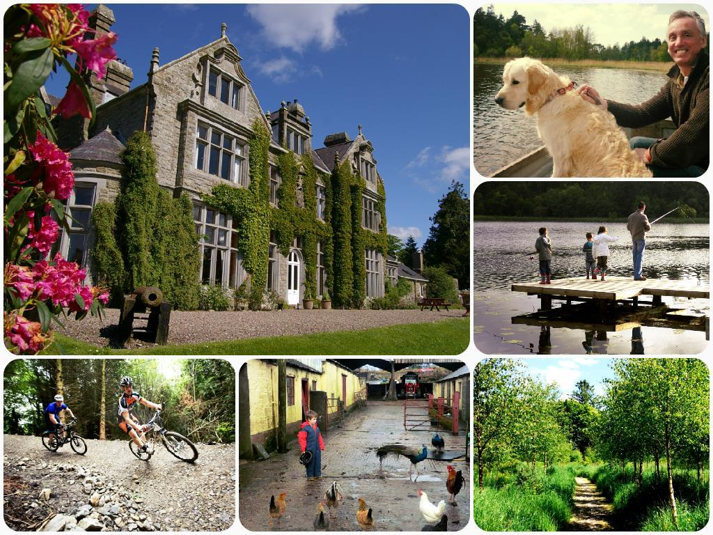 Summer breaks at Blessingbourne Estate Collage