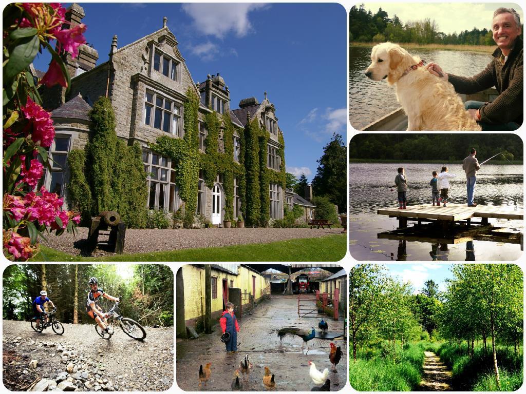 Summer breaks at Blessingbourne Estate Collage