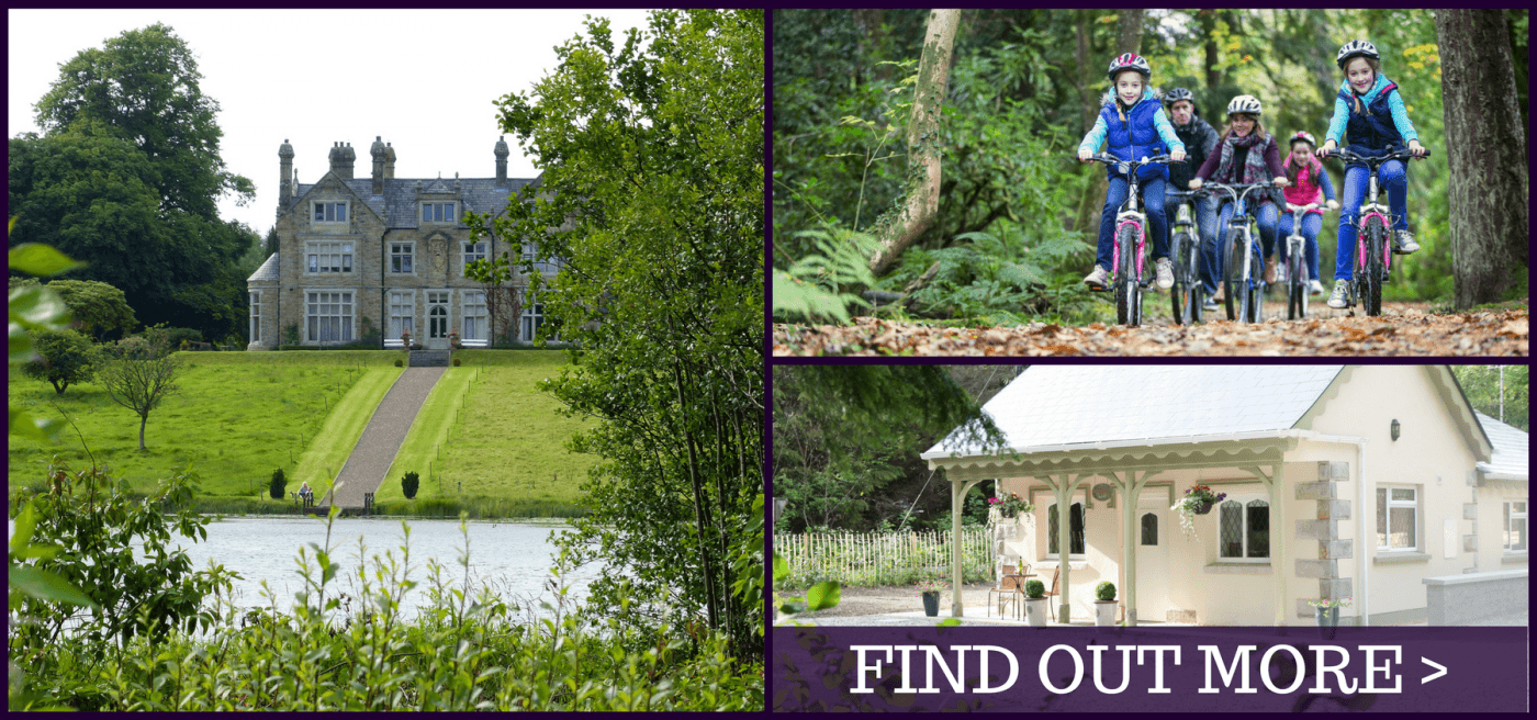Explore The Outdoors at Blessingbourne Estate